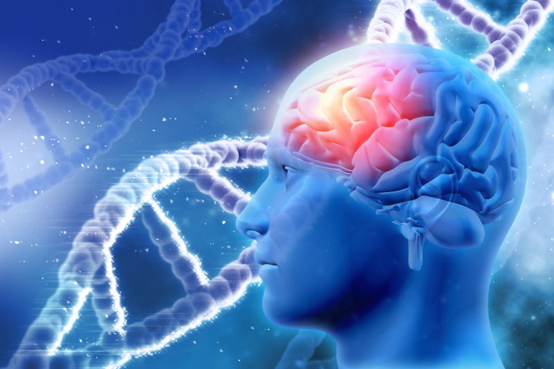 Demencja i choroba Alzheimera – jak je rozróżnić?